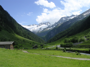 Alpenwei